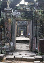 Free Ta Phrom Temple In Angkor Royalty Free Stock Photography - 18898437