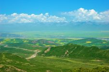 Free China Qinghai Flower And Field Landscape Stock Photos - 18891943