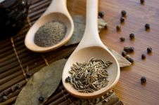Free Spices Royalty Free Stock Images - 18892189