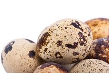 Free Quail Eggs Stock Photos - 18896853