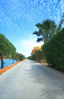 Free Path Way With Palms Stock Photos - 18897723