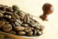 Free Coffee Beans Royalty Free Stock Images - 18899479
