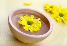 Free Yellow Flowers In Wooden Bowl Stock Images - 18899884