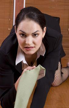 Free Business Woman Crawl Stock Image - 1895191
