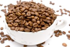 Free Raw Coffee Royalty Free Stock Image - 1896166