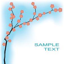 Free Spring Background With Sakura Flowers Royalty Free Stock Photos - 18900008