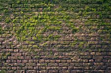 Free Bricks And Moss Royalty Free Stock Image - 18900296