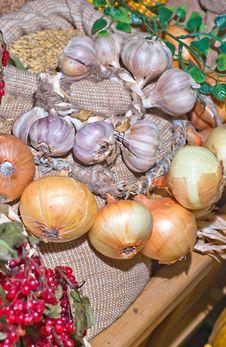 Garlic  And Onion Stock Image