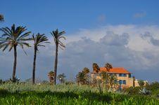 Free Jaffa Stock Image - 18901311