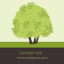 Free Card With Stylized  Tree Stock Photo - 18902100