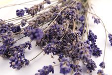 Free Lavender, Herbal, Relax Royalty Free Stock Photography - 18902667
