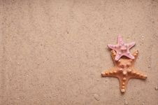 Free Sand Background With Two Starfish Royalty Free Stock Image - 18903626