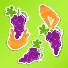 Free Sticker With Hand Holding Grapes Royalty Free Stock Image - 18905626