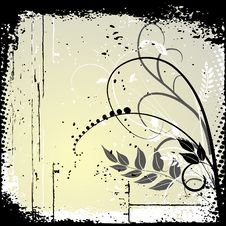 Floral Background, Ornament, Leaves And Flowers Stock Images