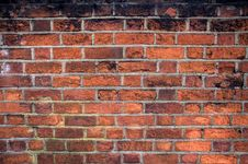 Free Red Brickwall Stock Images - 18907644