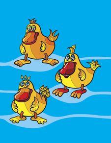 Free Ducks Cartoon Stock Images - 18907654