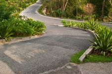 Free Three Road In The Park. Royalty Free Stock Photography - 18909637