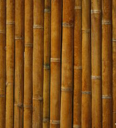 Free Bamboo Background Royalty Free Stock Photos - 18909938