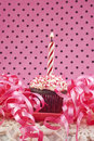 Free Cupcake With Lit Candle Royalty Free Stock Images - 18910569