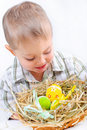 Free Little Boy With Easter Eggs In Basket Royalty Free Stock Image - 18914916