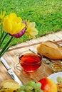 Free Breakfast In The Garden. Stock Image - 18918211