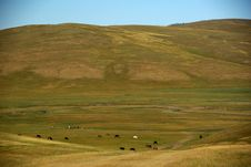 Free Landscape In Mongolia Stock Image - 18914371