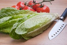 Free Romaine Lettuce And Tomatoes. Royalty Free Stock Photography - 18914617