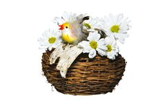 Chicken In A Nest With Flowers Royalty Free Stock Photography