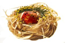 Free Easter Eggs In A Nest Royalty Free Stock Photo - 18915255