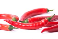 Many Red Peppers Stock Image