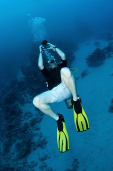 Free Scuba Diver Looks Up And Takes Photograph Stock Photo - 18916780