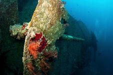 Free SS Thistlegorm Battle Gun Royalty Free Stock Photo - 18917045