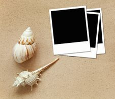 Blank Photos With Sea Shells On Sand Royalty Free Stock Photos