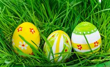 Free Easter Eggs Are Colored In Green Grass Royalty Free Stock Photography - 18919127