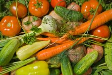 Heap Of Vegetables 7 Royalty Free Stock Photos