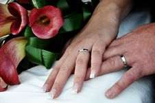 Free Hands With Wedding Rings Stock Photo - 18922410
