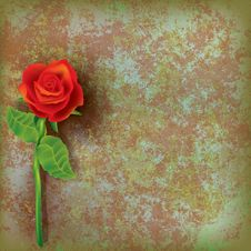 Free Abstract Floral Illustration With Red Rose Royalty Free Stock Images - 18925089