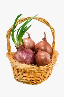Free Onions Stock Photos - 18926653
