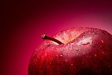 Free Red Apple. Macro. Stock Photography - 18926862