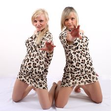Free Leopard Dress Stock Photos - 18927563