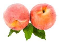 Free Ripe Peaches Stock Images - 18928764