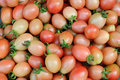 Free Tomato Background Royalty Free Stock Image - 18937966