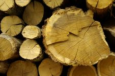 Free Timber, Logs, Firewood Stock Photos - 18930233