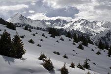 Free Winter Scene. Stock Photos - 18937133
