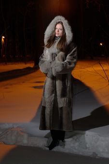 Female In Fur Coat Stock Photography