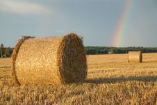 Large Hay Roll On The Field Stock Image