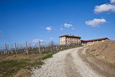 Italian Villa With Vineyard: Spring Season Stock Photo