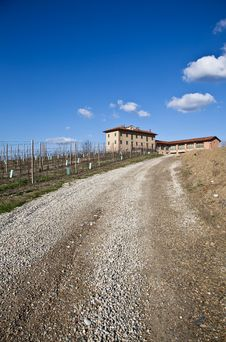 Italian Villa With Vineyard: Spring Season Royalty Free Stock Photo