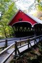 Free The Red Bridge Stock Photography - 18945172