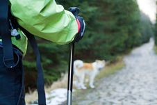 Free Nordic Walking In Mountains Royalty Free Stock Photos - 18943548